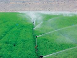 Оросители для аграрного сектора